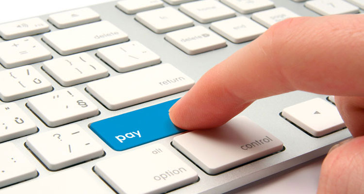 Online Payment System Without Fees